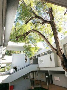 Lunenfeld-Kunin Residences