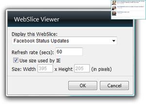 WebSlice Viewer Gadget Options