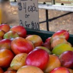 Visiting Local Farmers' Markets in Search of Authentic Taste of Hawaii