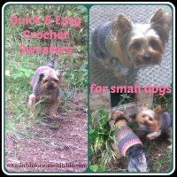 Free Quick and Easy Small Dog Crochet Sweater