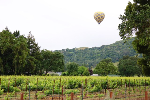 Weekend Trip in Napa | Napa Travel Guide | Things to do in Napa | It's All Chic To Me