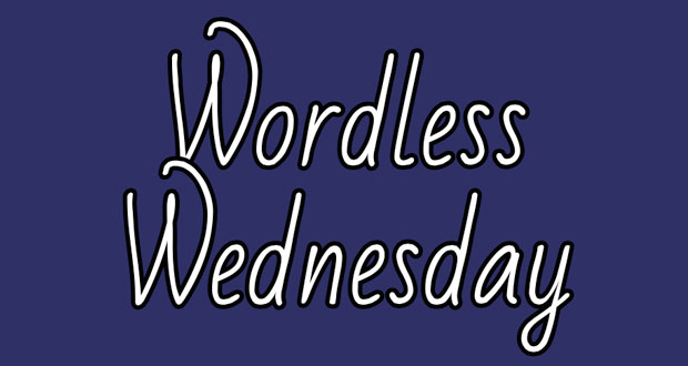 Wordless-Wednesday