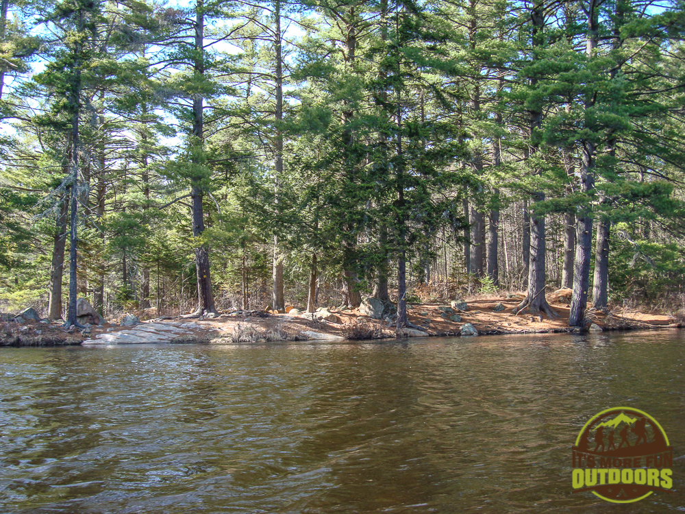 You see primitive campsites within 20-30 minutes of paddling, and they go on to the very western shore of Lows Lake. May 2015 Bog River Flow-Hitchins Pond, Lows Lake