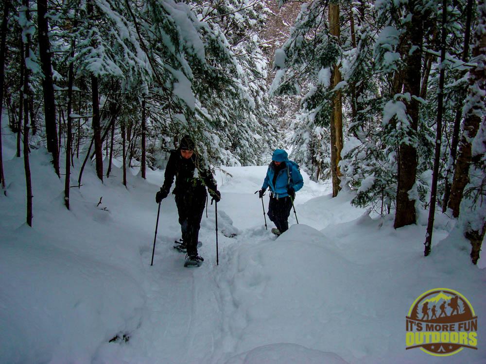 On the trail to Tabletop Mt., a climb you can do from the Adirondak Loj, Lake Placid, Adirondacks, NY