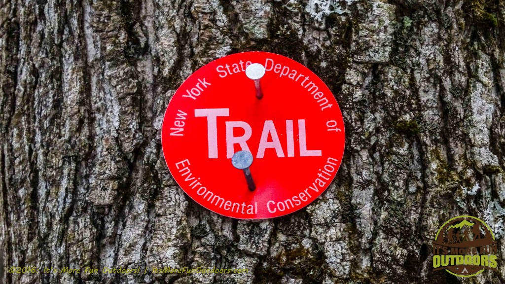 We followed red trail markers, out and back. Owl's Head Winter Fire Tower Challenge Hike, Long Lake, NY, Adirondacks March 13, 2016