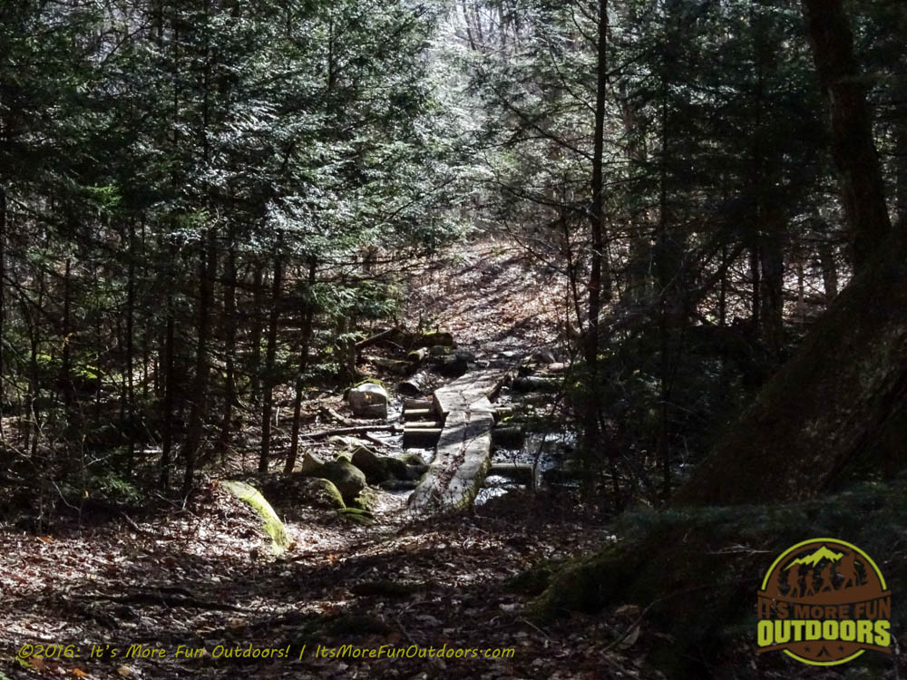 Beautiful forest trail and some bog bridging to get us through some of the really mucky stuff. Owl's Head Winter Fire Tower Challenge Hike, Long Lake, NY, Adirondacks, March 13, 2016