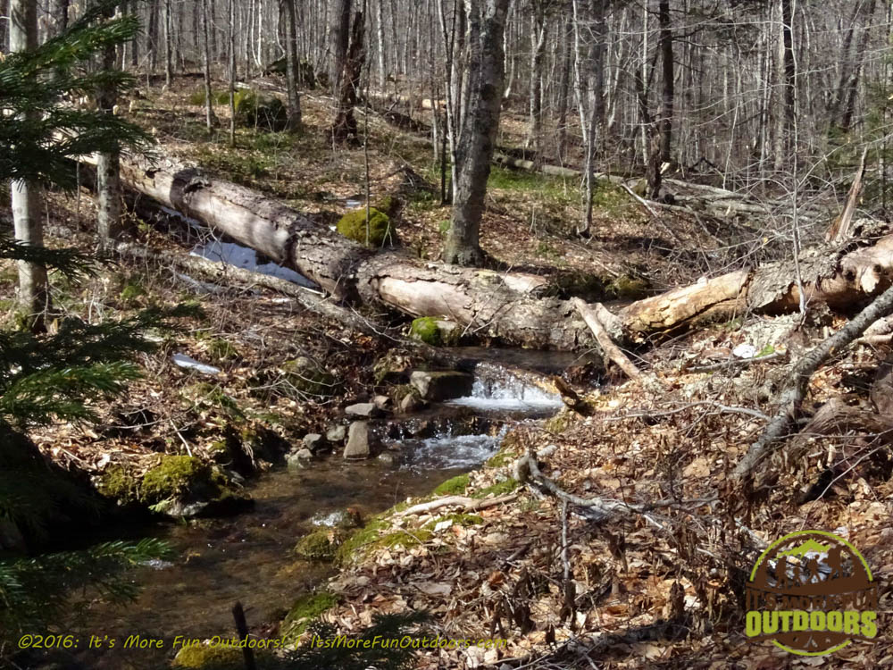 A pretty little cascade on a brook we crossed. Owl's Head Winter Fire Tower Challenge Hike, Long Lake, NY, Adirondacks, March 13, 2016