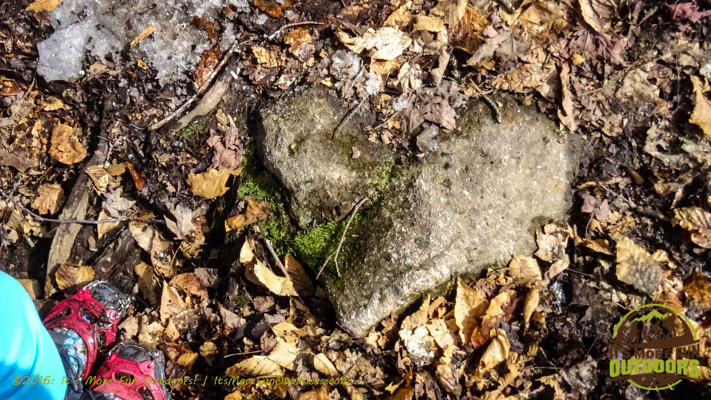 A heart Dora found near the Owl's Head Fire Tower Observer's Cabin site. Owl's Head Winter Fire Tower Challenge Hike, Long Lake, NY, Adirondacks March 13, 2016