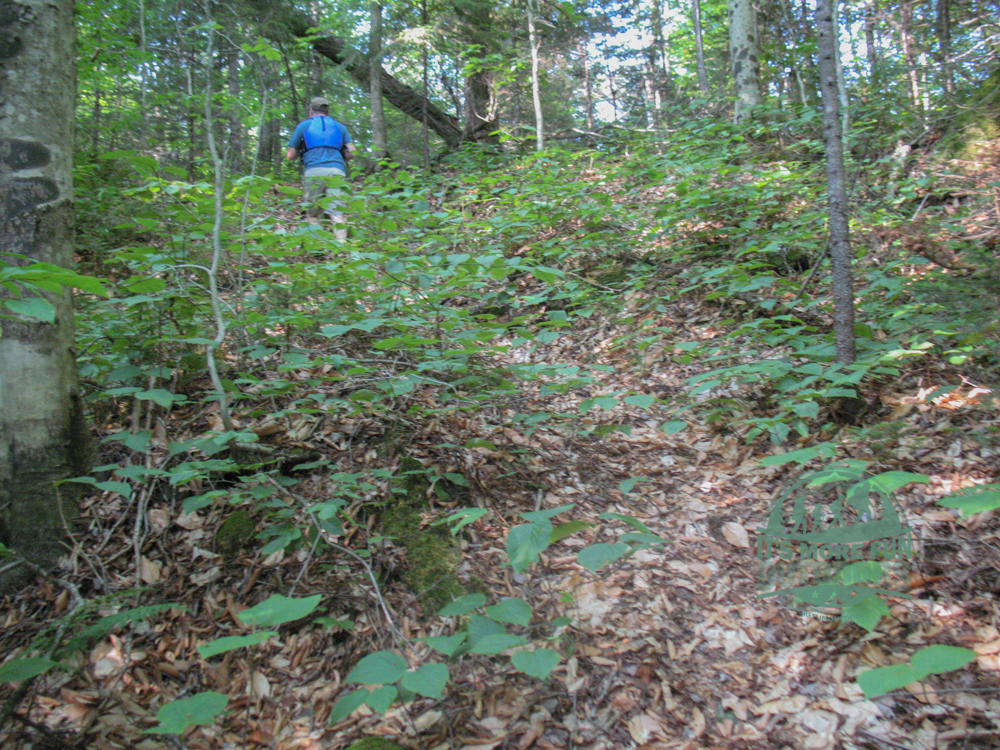 The second camp. A hill to climb for the privy! Henderson Lake Kayak Camping, Tahawus Hike!