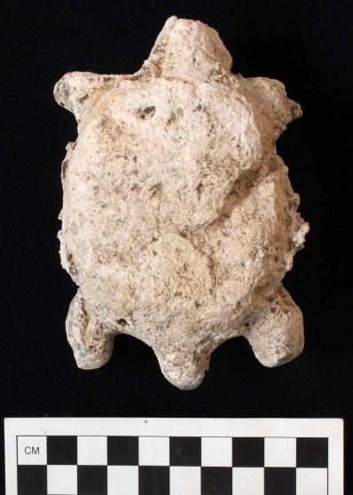 Altar turtle, Str QQ 1/1-2, Nixtun-Ch'ich' (photo by Timothy Pugh)