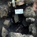 Zacpeten, Str 766, Fea 766A-1, With In Situ Censer Sherds (likely cached)