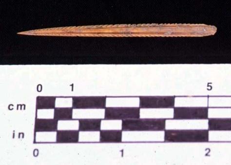 Stingray Spine, Str. 766A-l, Cache 2, Zacpeten