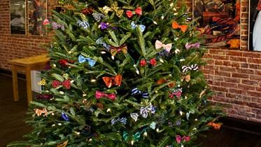 bowtietree