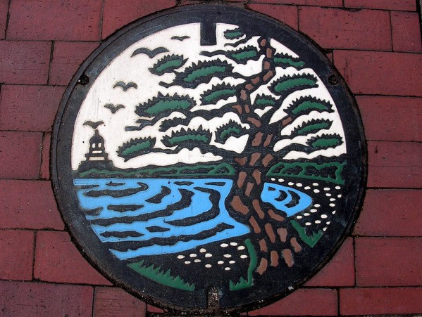 Beautiful Manhole Art on the Streets of Japan #2 Picturesque