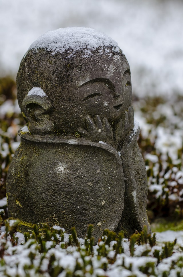 """Oh no! It's cold!"" (at Enko-ji temple)"