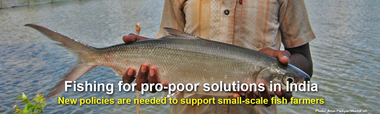 Fishing-for-pro-poor-solutions-in-India