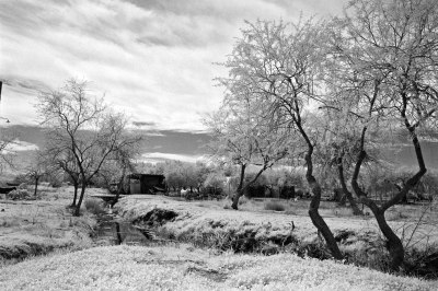 Rural Scenery in Infrared