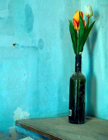 Some tulips in a bottle. I found this as it is inside an old church.