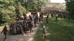 A Herd of Walkers