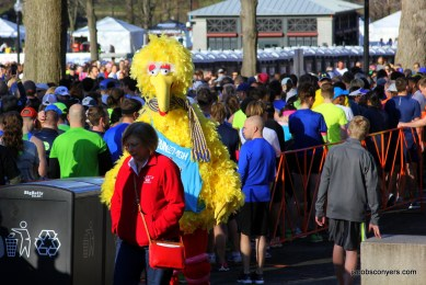 Why is Big Bird here?
