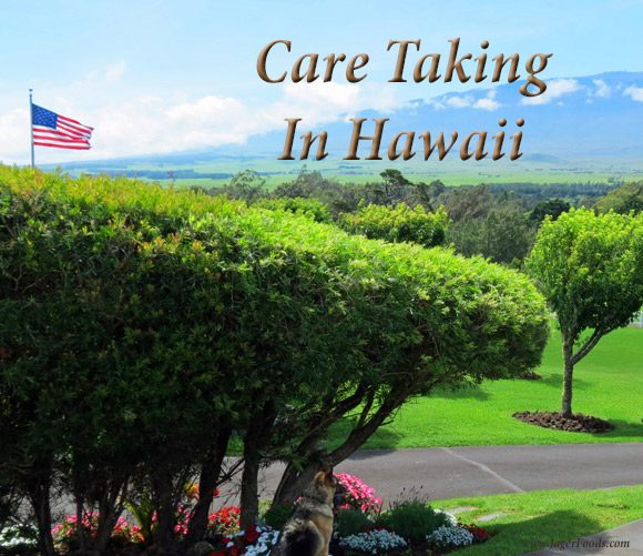 Care Taking in Hawaii