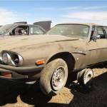 00-1976-jaguar-xj-s-in-colorad-junkyard-photo-by-murilee-martin