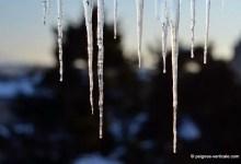 l'hiver fait son oeuvre