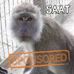 Saat is  is currently being sponsored by Prima.
