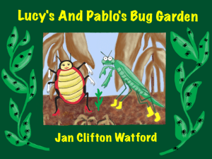 Lucy and Pablo's Bug Garden - cover