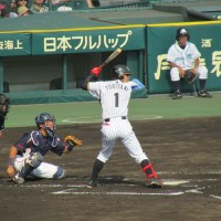 Take me out to the (Japanese) ball game -- watching a Hanshin Tigers baseball game