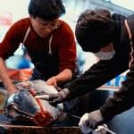 _DSC5591_tsukiji