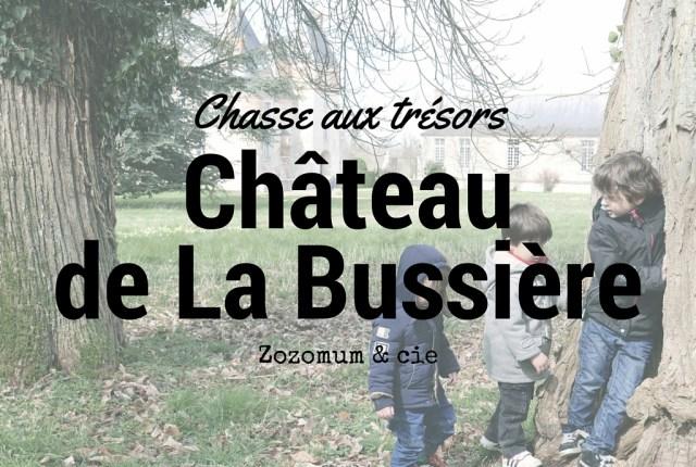 Chateau de la bussière