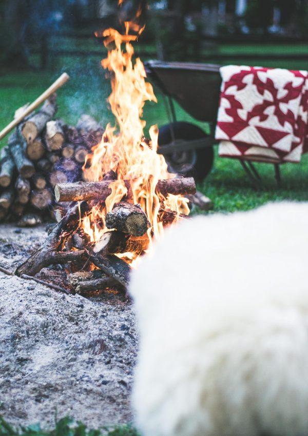 How to Host a Glam Campfire Gathering