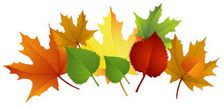 fall-leaves2