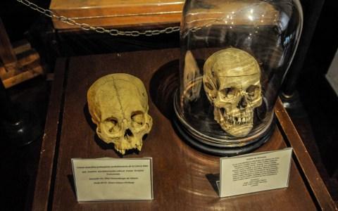 / Imagen tomada en el Museo de la Medicina Ricardo Rueda González.