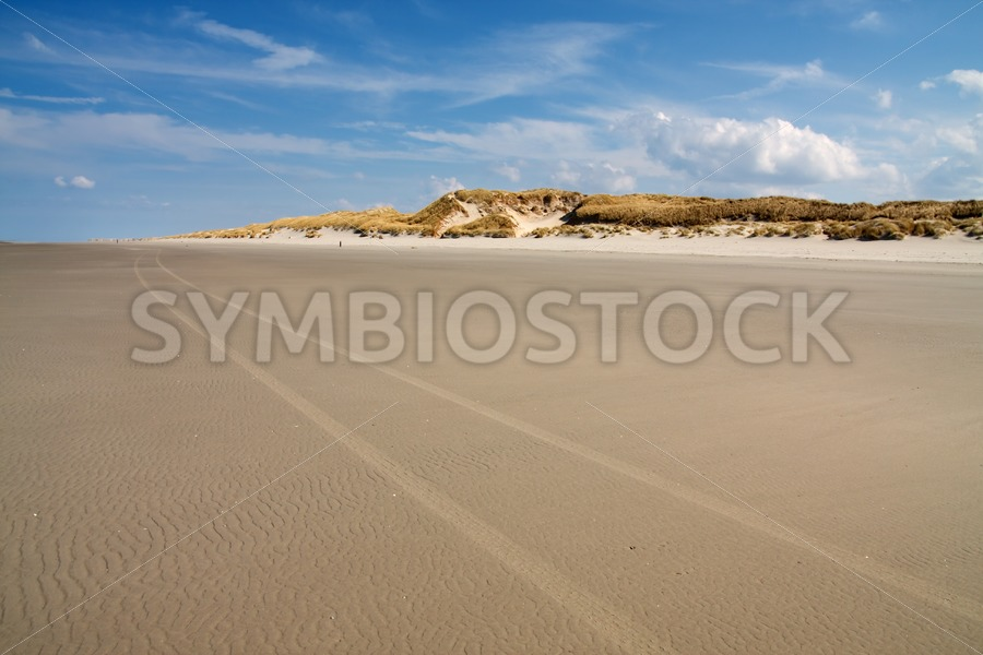 Beach scene with sand dunes - Jan Brons Stock Images