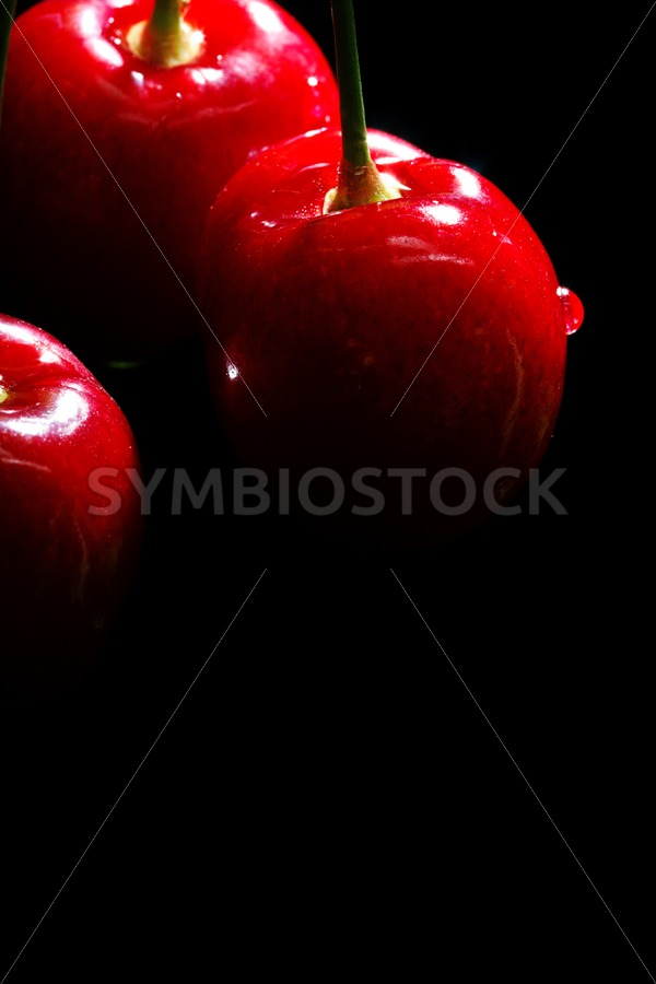 Juicy cherries - Jan Brons Stock Images