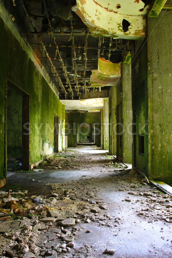Abandoned Hotel Monte Palace Azores - Jan Brons Stock Images