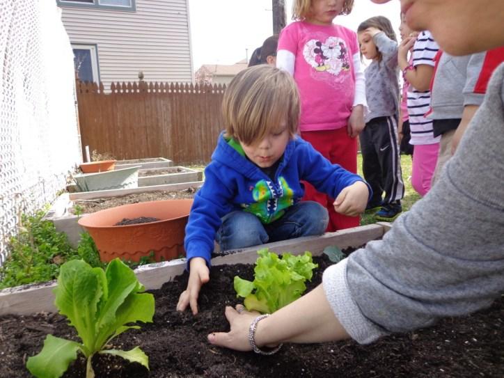 gardening 108