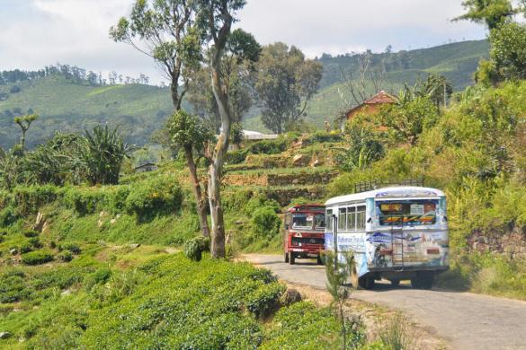 Sri-Lanka-bus