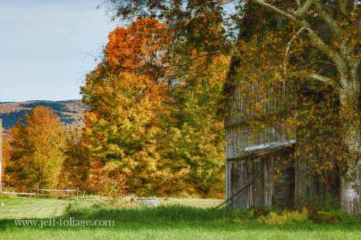 Danby Vermont barn in fall foliage color
