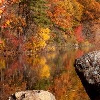 Resources for planning fall foliage trips Pt1