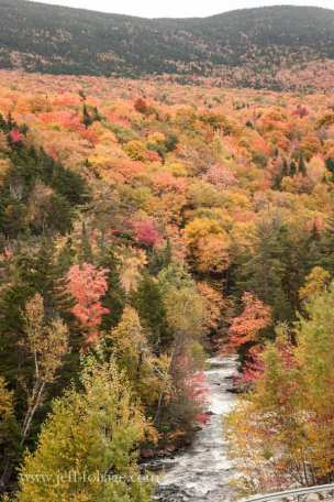 hillside above River is a tapestry of fall color covering the maine Hills