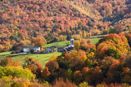 A hidden gem on the opposite hill of the Green Mountain National Forest. You can sit on this hill on one side of Route 7 and peek at the farms on the other side.
