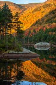Peak fall colors on the beaver pond on lost river road. This is on the western edge of New Hampshire's White Mountains.