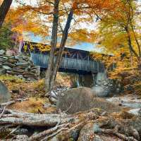 New England's foliage report, weather, locations