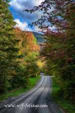 Hazen's Notch road near Montgomery Vermont 23 Sept