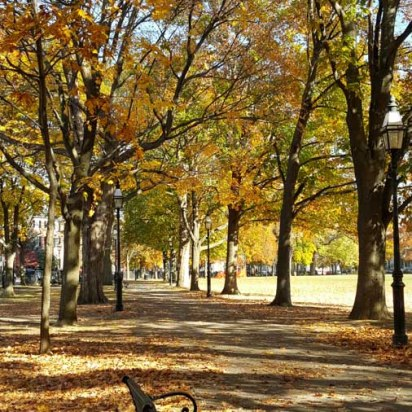 Walking down a path on Salem common under golden fall foliage