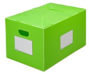 Packaways green classic plastic storage box
