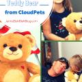 Talking Teddy Bear From CloudPets Giveaway!
